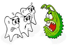 karies-zubov2